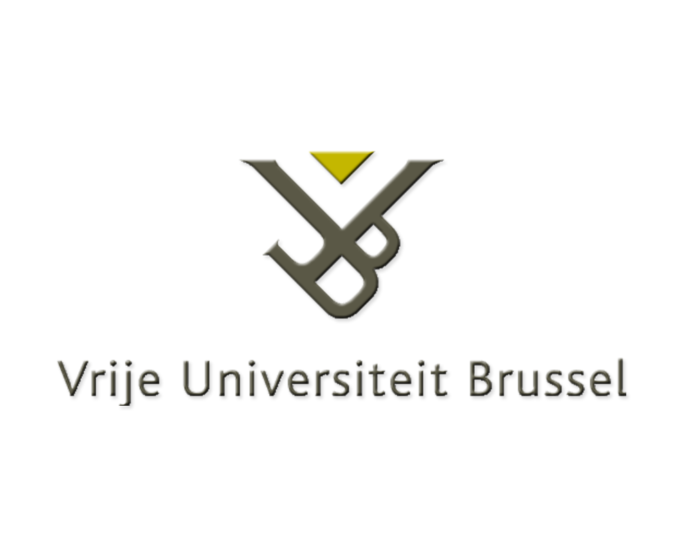 Doru Frantescu at Vrije Universiteit Brussel